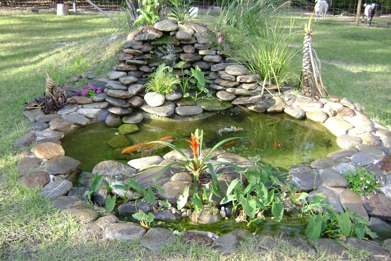 River rock koi pond for Koi pond rocks